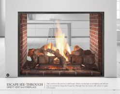 ESCAPE SEE-THROUGH DVG Fireplace by Heat & Glow