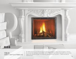 TRUE DVG Fireplace by Heant n'Glow