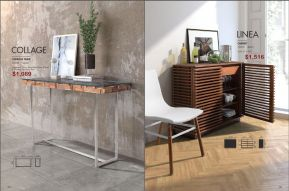 COLLAGE CONSOLE TABLE & LINEA CABINET by Zuo